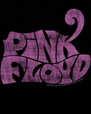 Pink Floyd Logo Lightweight Junior Tee Shirt s M L XL
